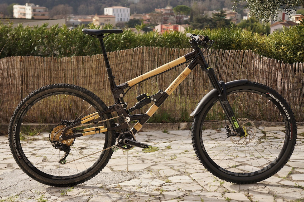 Bamboo and Carbon Bike